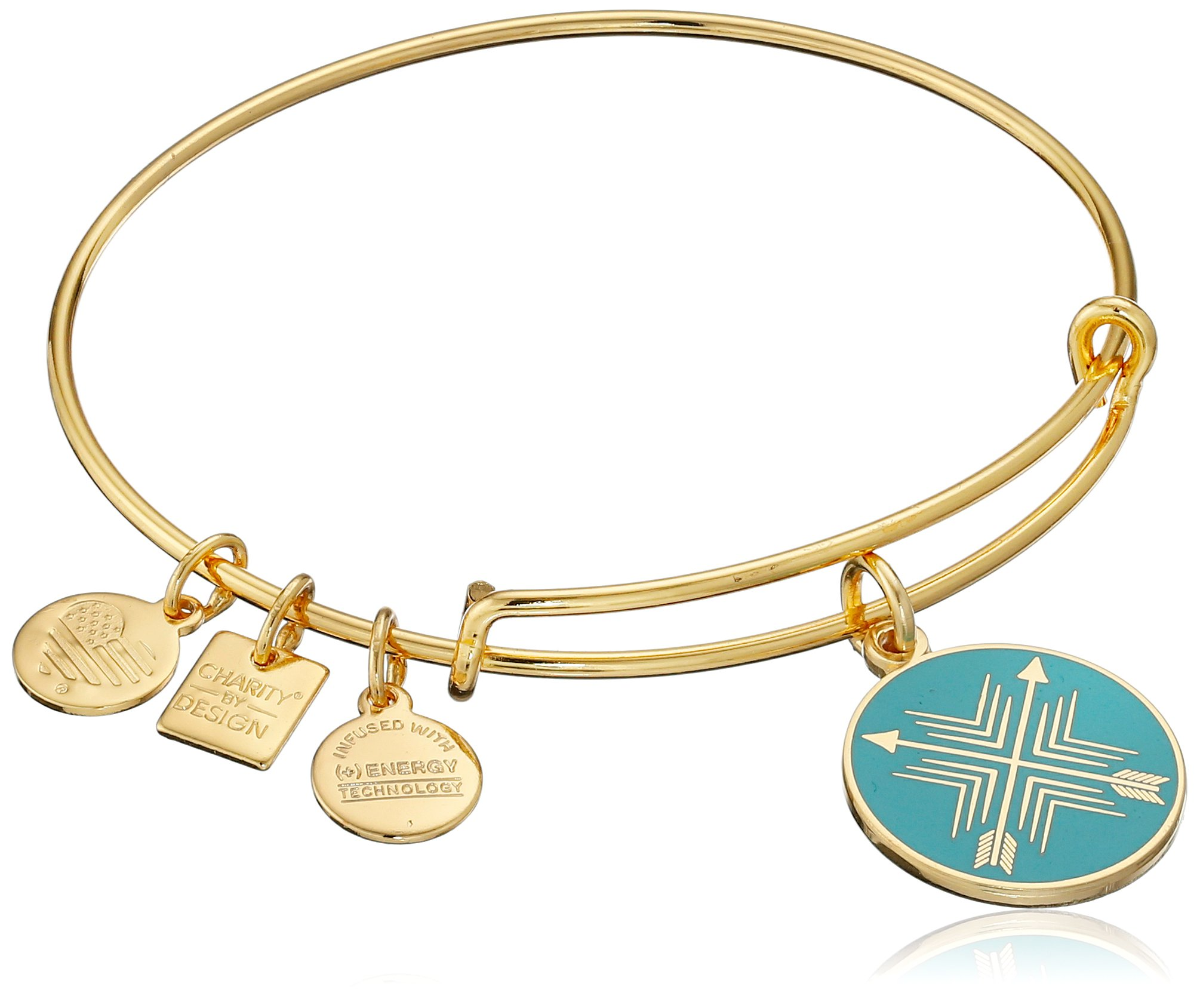Alex and Ani Charity By Design Arrows of Friendship Expandable Gold-Tone Bangle Bracelet