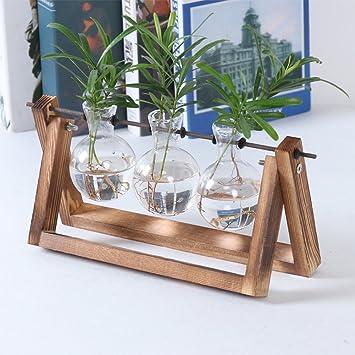 Jarrón de cristal GUOLIAN moderno para decoración de macetas – Jarrón transparente vintage marco de madera