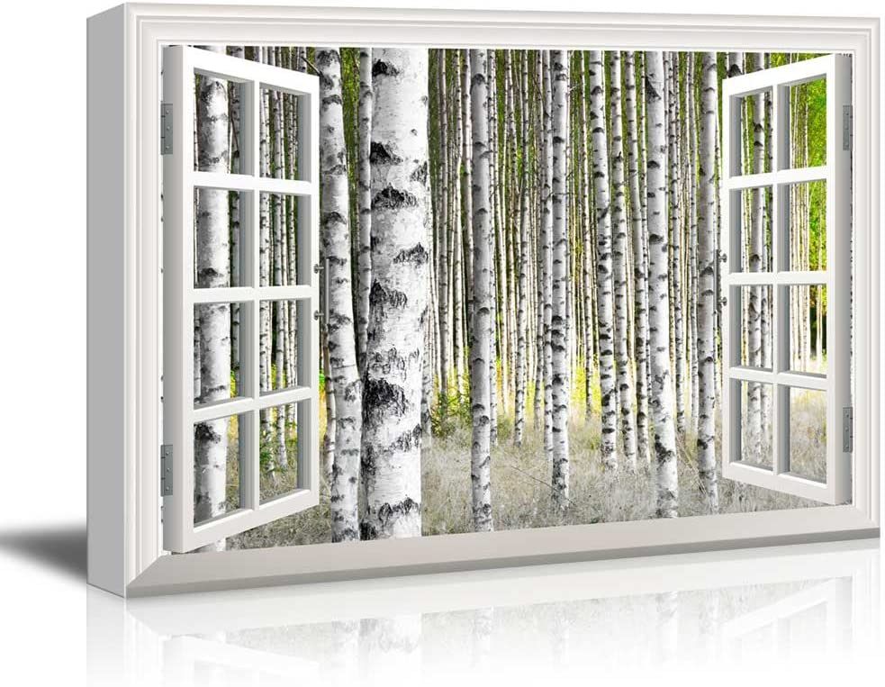 """Canvas Print Wall Art - Window Frame Style Wall Art - Birch Trees in Bright Sunshine in Late Summer 