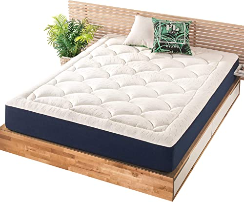 Mellow Plush Pillow Top Memory Foam Mattress
