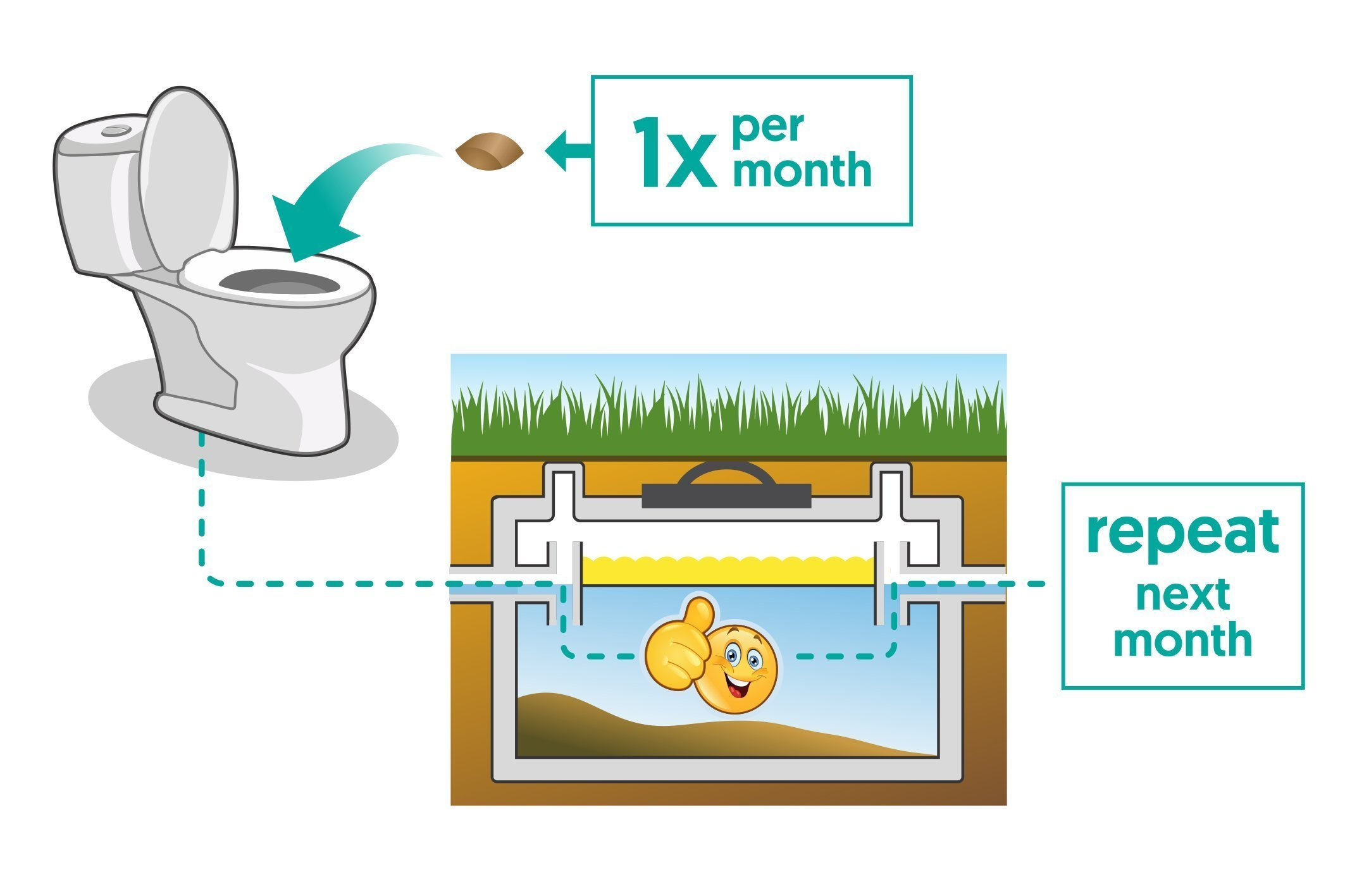 Septic Tank Treatment - 1 Year Supply of Dissolvable Easy Flush Live Bacteria Packets (12 Count) - Best Way to Prevent Expensive Sewage Backups - Made in USA by Septic Treatment by Cabin Obsession (Image #4)
