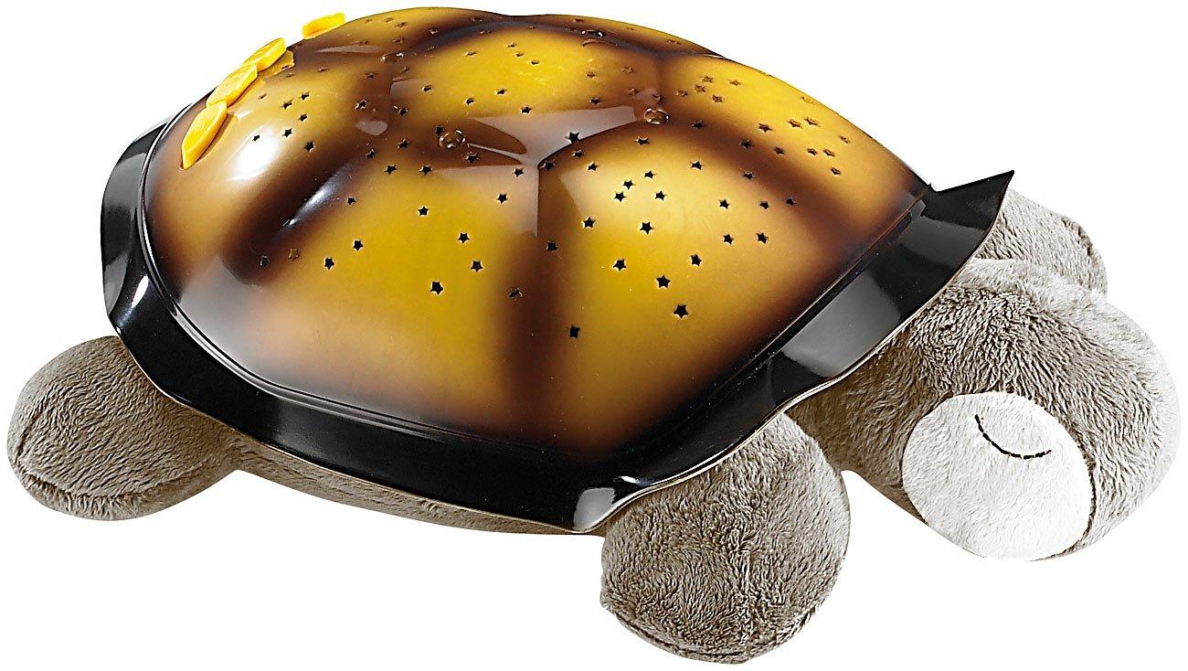 Ziemlich Schildkröte Farbseiten Fotos - Malvorlagen-Ideen ...