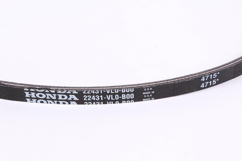 Amazon.com: Honda 22431-vl0-b00 Lawn Mower Correa de ...