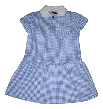 2a0f97c48bc Girls Gingham School Dress Uniform Blue (9 years)  Amazon.co.uk  Clothing