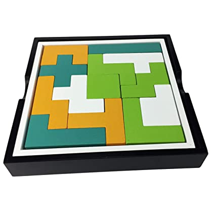 Project Genius Just Teasing for Minds On The Grow Assorted JT002 Pentominos Puzzle