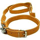 VRCT 1.25 Inch Designed Dog Collar Belt, 1.5M-2M LENGTHY Dog Dog Collar & Leash (Medium, Multi Color)
