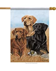 Carson Home Accents Trends Classic Large Flag, Dogs The Pros