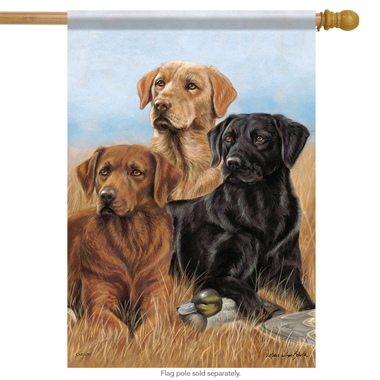Carson Home Accents Trends Classic Large Flag, Dogs The Pros 48470