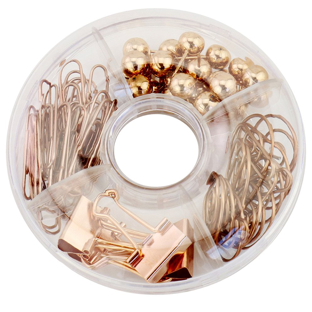 65pcs Desk Decor Paper Clips, Push Pins, Binder Clips with Acrylic Paper Clips Holder Clear Office Supplies Desk Organizer Set (Rose Gold)