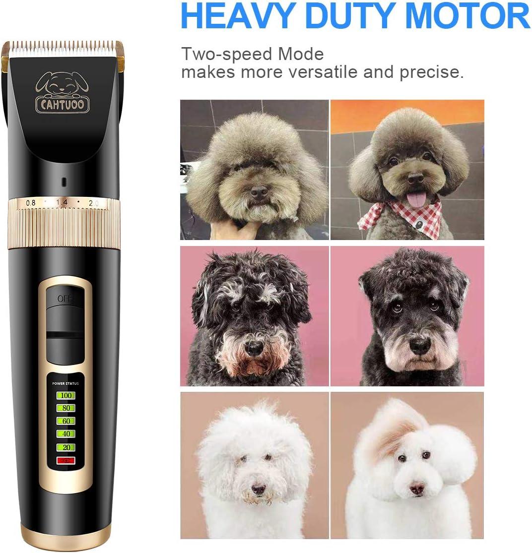 alpha-ene.co.jp Heavy Duty 2-Speed Pet Hair Grooming Clippers Kit ...