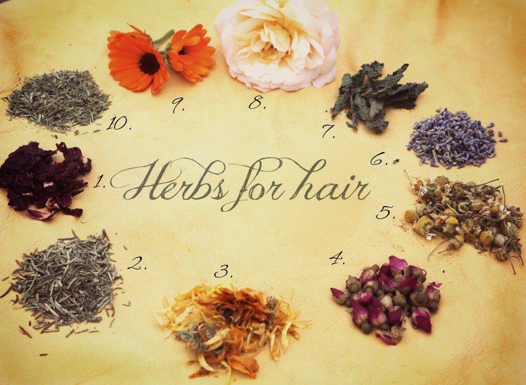 AL-SHAAFI 50PLUS Herbal Hair Oils in ONE bottle (5-BOTTLES 120ml Each) GET FREE SHAMPOO Value $14.99