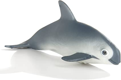 For Ages 3 and Up Safari Ltd Realistic Hand Painted Toy Figurine Model Lead and BPA Free Materials Nudibranch Quality Construction from Phthalate