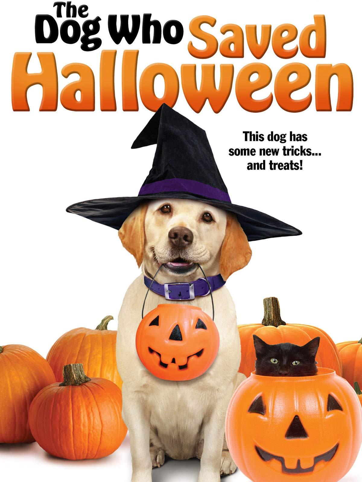 The Dog Who Saved Halloween on Amazon Prime Video UK