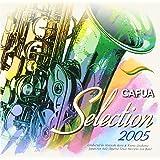CAFUAセレクション2005 吹奏楽コンクール自由曲選「エブリデイ・ヒーロー」