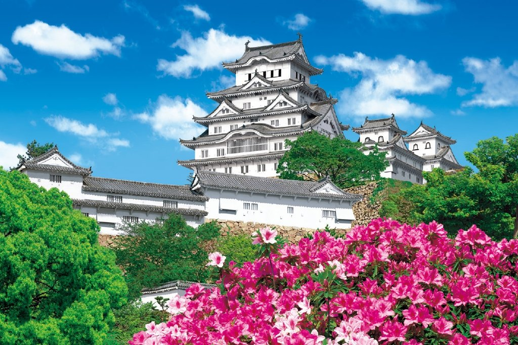 Hyogo - - 59-507 and Himeji Castle 1000 Piece azalea brain power diagnostic puzzle (japan import)