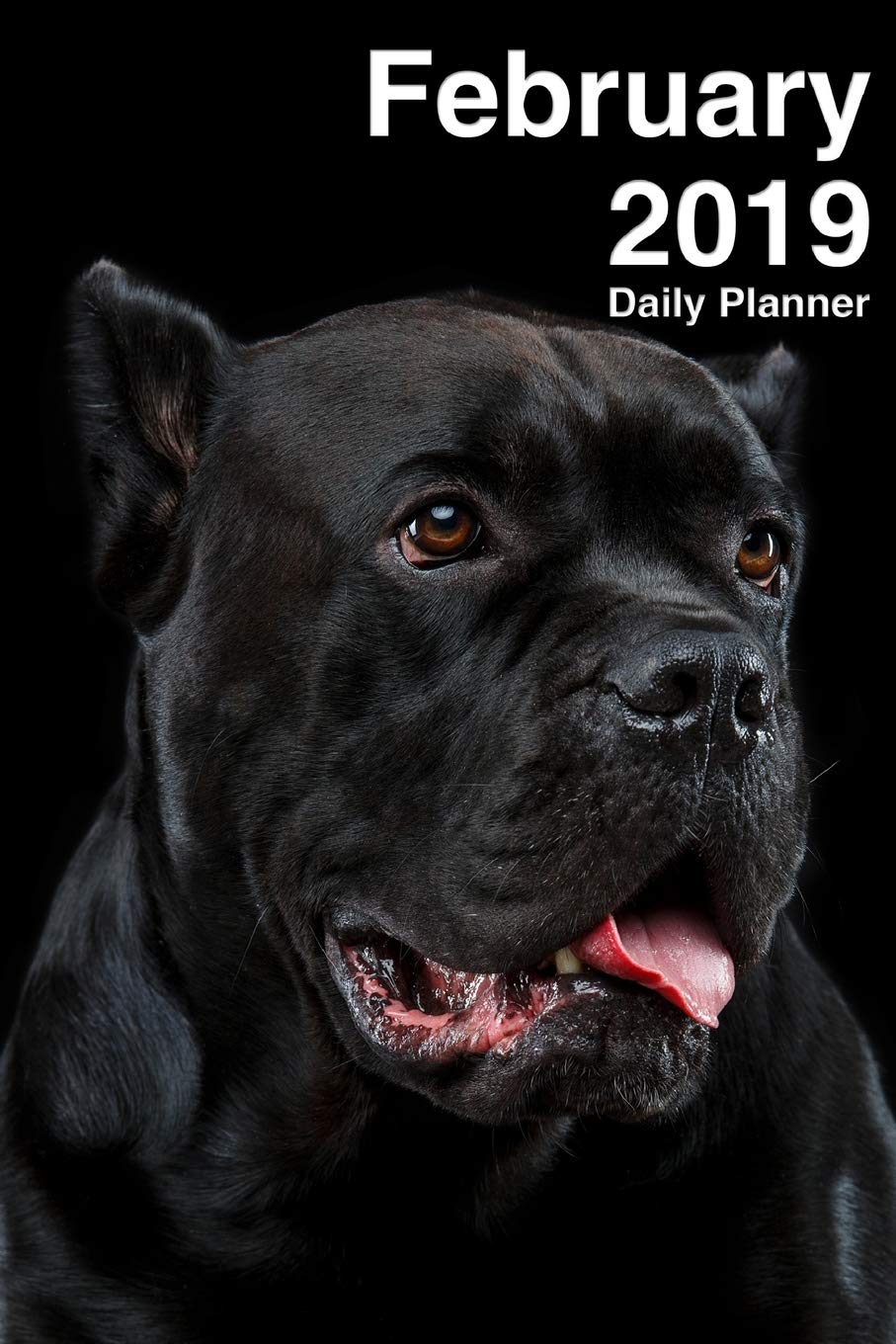 February 2019 Daily Planner: One Month Cane Corso Planner ...