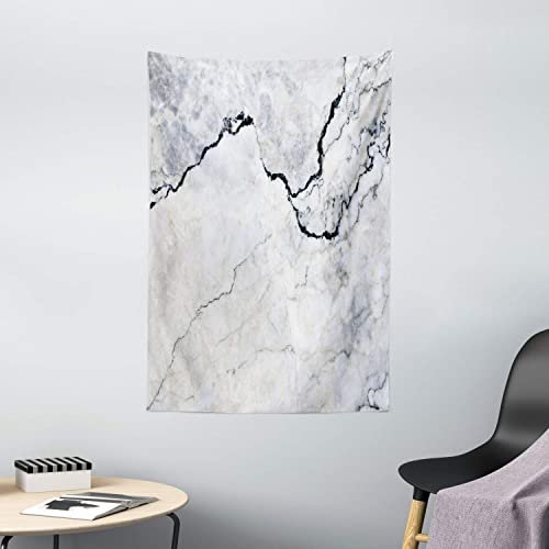 Ambesonne Marble Tapestry, Marble Texture with Smooth Details Cracked Dimension Stone Smooth Design Work of Art Print, Wall Hanging for Bedroom Living Room Dorm Decor, 40 X 60 , Grey
