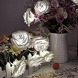 Lychee 20 LED Battery Operated fiore della Rosa leggiadramente luci della stringa per Outdoor Indoor Casa Giardino Matrimonio Natale Partito decorazione(bianco)