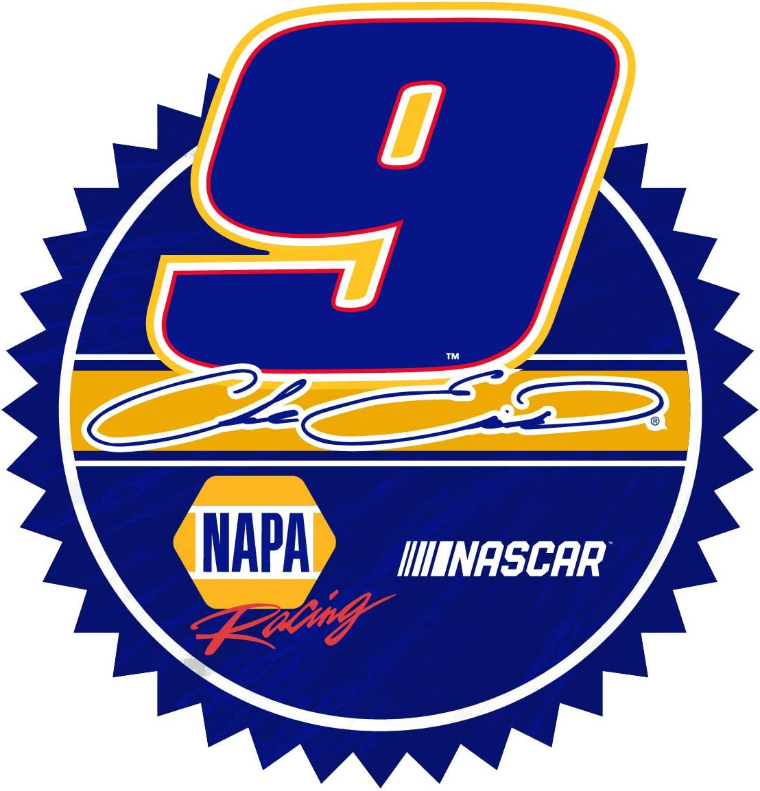 Inc Chase Elliott #9 Hood Decal R and R Imports