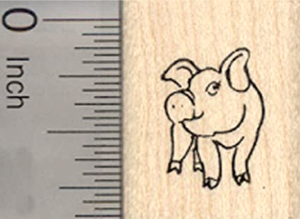 amazon com tiny pig rubber stamp farm livestock small arts