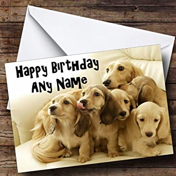 Dachshund Puppy Dogs Personalised Birthday Card Amazoncouk Office Products
