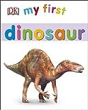 My First Dinosaur (My First Board Book)