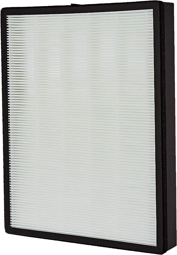 Philips HEPA FY3433/10 Filtro NanoProtect para purificador AC3256 ...