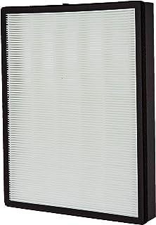 iAmoy Kit de Repuesto de carbón Activado y HEPA Filtro,FY3432/10 y ...