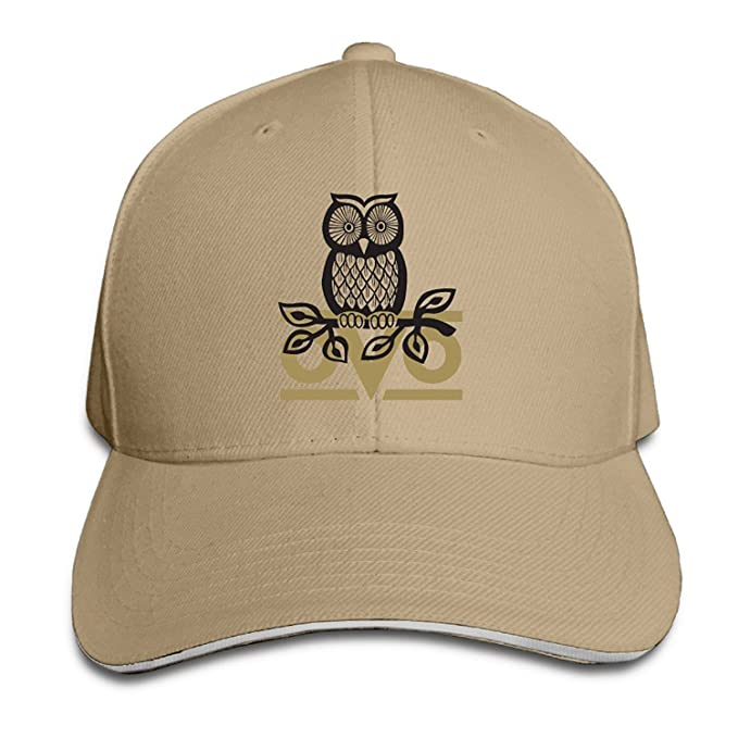 36df4904e8a Amazon.com  Bro-Custom OVO Owl Sandwich Snapback Chapeau Outdoor ...