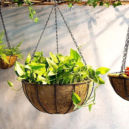 Ganeep Colgante de hortalizas de coco maceta jardinera jardineras ...