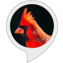 State Bird Quiz