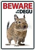 Magnet & Steel Beware of the Degu A5Schild