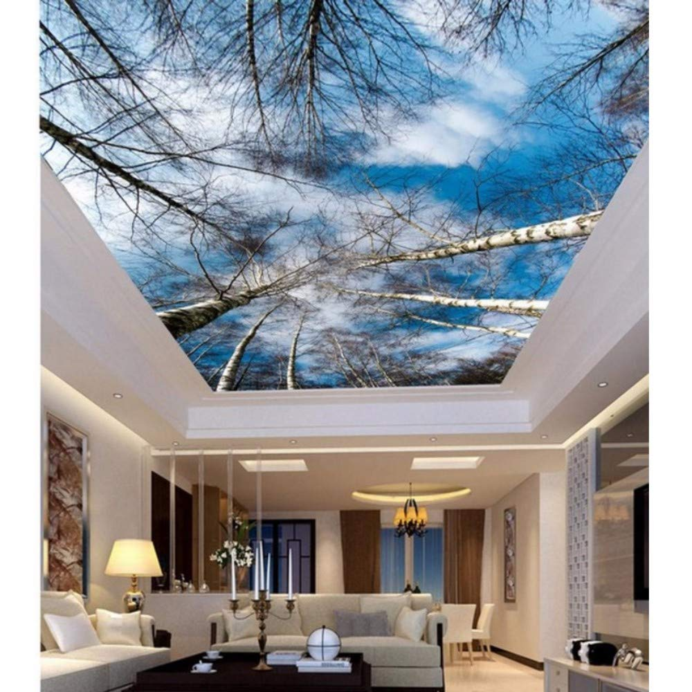3d Murals For Ceilings