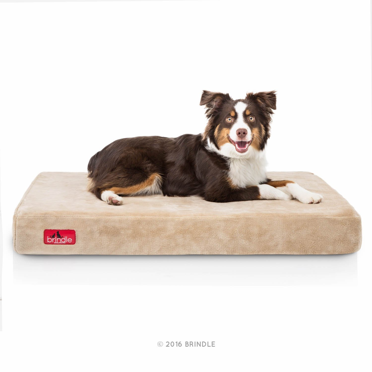with large medium denim extra foam pmquml durable gel amazon dog memory cooling case bed pet inch dp liner cover com and waterproof