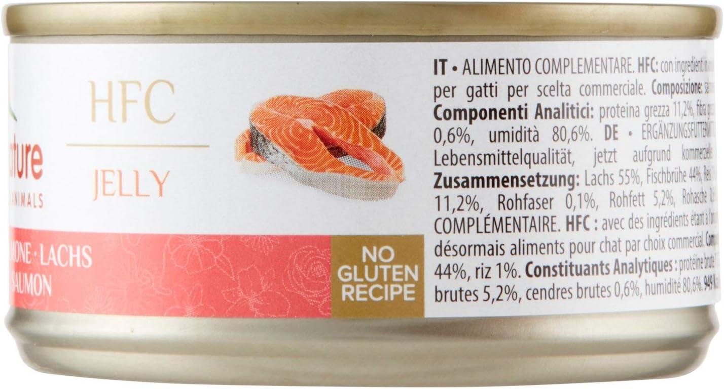 Almo Nature HFC Salmón comida húmeda para gatos: Amazon.es ...