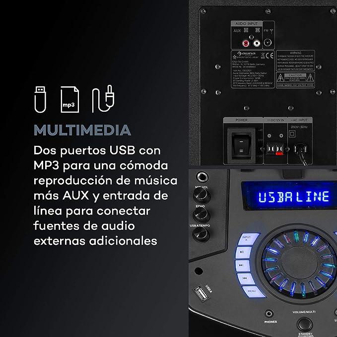 auna Clubmaster 8000 Equipo de Audio para Fiestas: Amazon.es: Electrónica