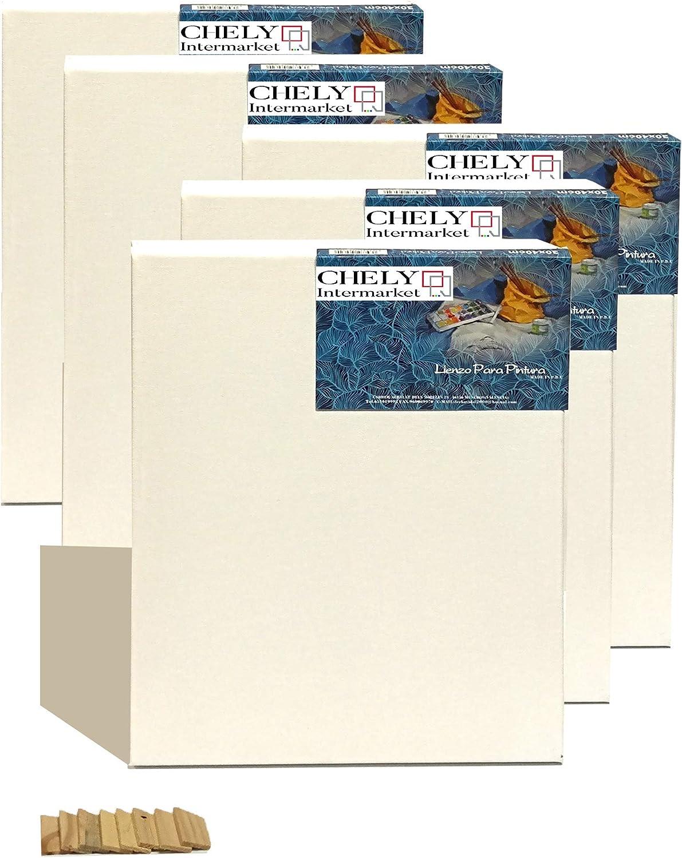 Chely Intermarket, lienzos para pintar 20x30 cm 280grs/ Set-5piezas (Perfil 16mm)/Apto para Óleo, acrílico./ Pre-Estirado 100% Algodón/Color Blanco/Triple Preparado(560-20x30*5-0,25)