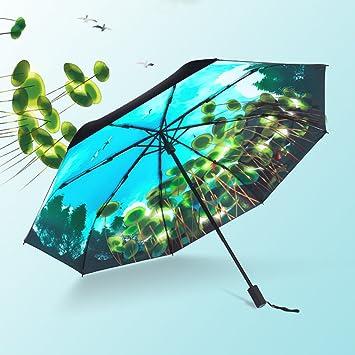 Impermeable Paraguas De Viaje Compacto Lakeview Cave Sky Rain - Sombrilla Doble para Fortalecer La Protección
