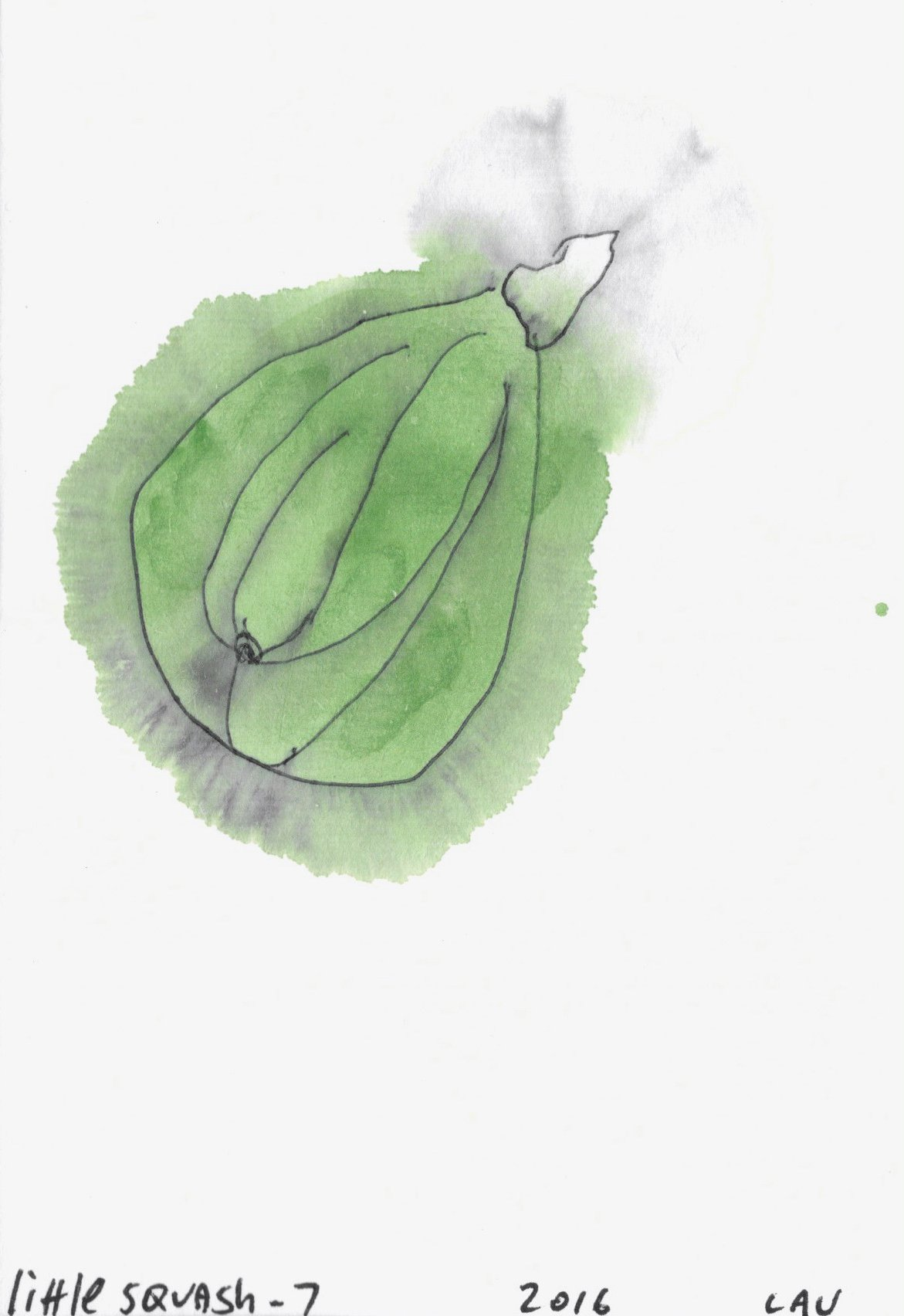 little squash #7 | Sumi ink paintings by