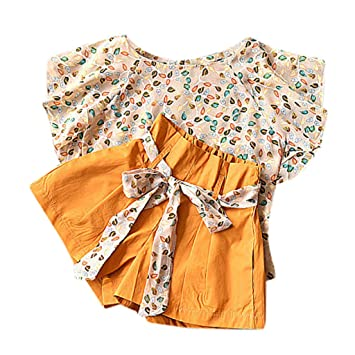 fa6f0fb25eed Nice Kids Toddler Baby Girl Shorts Set Flying Sleeves Floral Chiffon T shirt  Tops Shorts Pants
