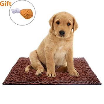 Amazon Com Dog Mat Dirty Absorbent Rugs Dog Doormat 22 X14