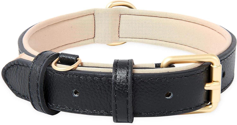 HEELE Collar Perro, Collar de Perro de Cuero Duradero Acolchado Suave, Negro, S