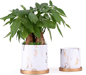 PETSWI 5.5 & 4.2 Inch Ceramic Planters (Set of 2), Modern Flower Plant Pot, Gardening Pots with Drainage for Outdoor Indoor Yard Garden Home Office Decoration