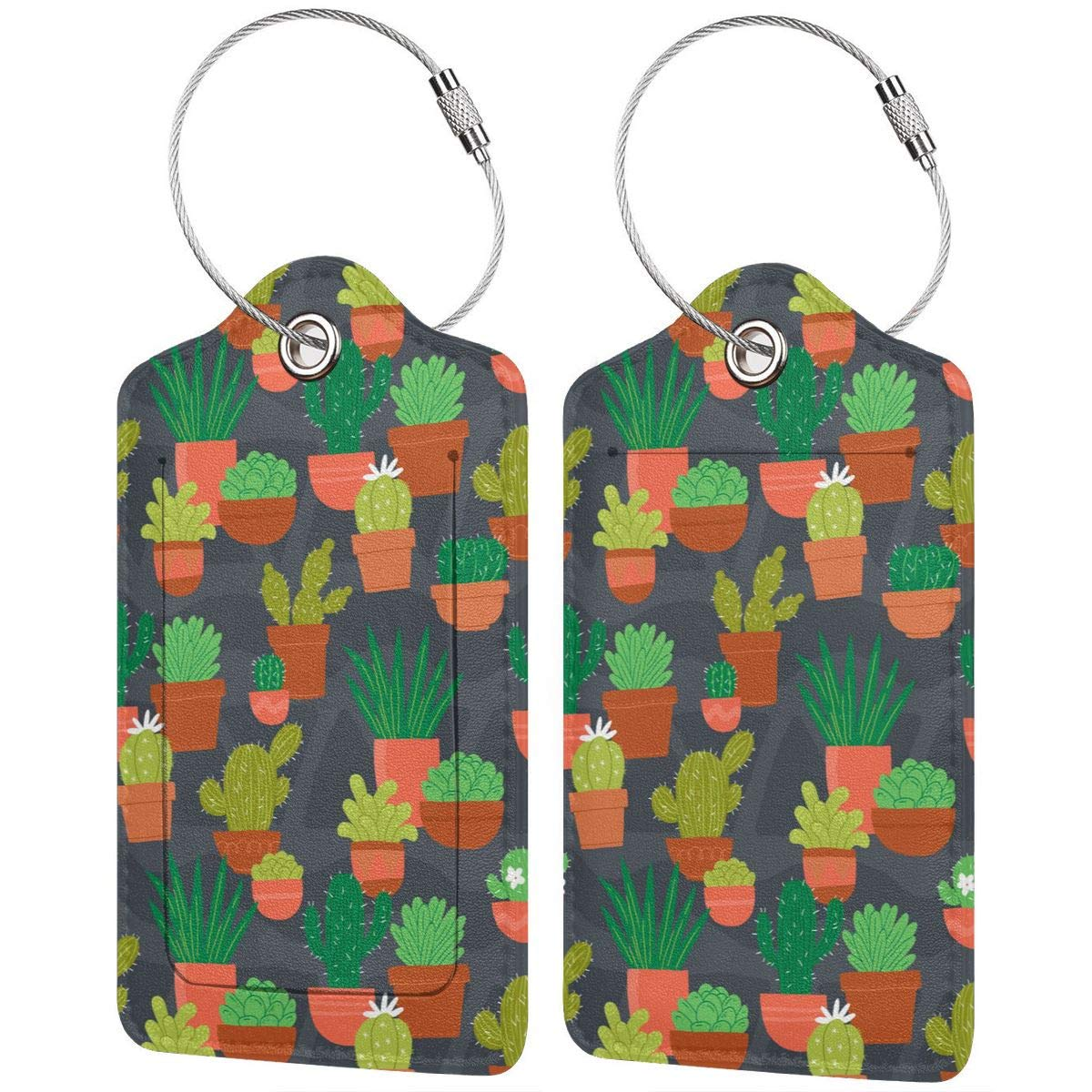 Leather Luggage Tags Full Privacy Cover and Stainless Steel Loop 1 2 4 Pcs Set Key Tags for Cruise Ships Honeymoon Gift Cactus Flower Pot 2.7 x 4.6 Blank Tag