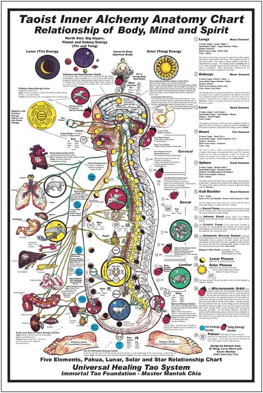 Rixart Taoist Inner Alchemy Anatomy Chart Poster Art Prints Wall Decor Photo Paper Material 36'' 47'' (24x36 inches)