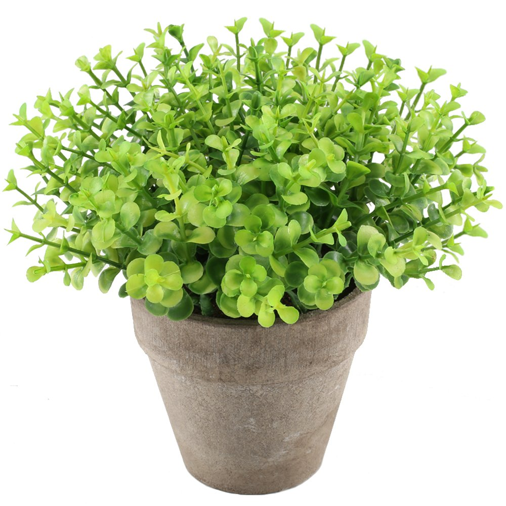 GTIDEA Artificial Fake Potted Plant Faux Greenery Bonsai Plastic Eucalyptus in Pot Evergreen Home Kitchen Tabletop Forcer Office Desktop Decorations