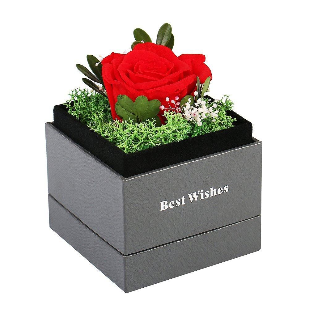 Amazon Handmade Preserved Flower Rose Preserved Fresh Flower