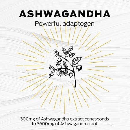 Vega One Organic Botanical Blends Turmeric Coconut with Ashwangandha 10 servings, 13.83 oz – Plant Based Vegan Protein Powder, Non Dairy, Gluten Free, Non GMO