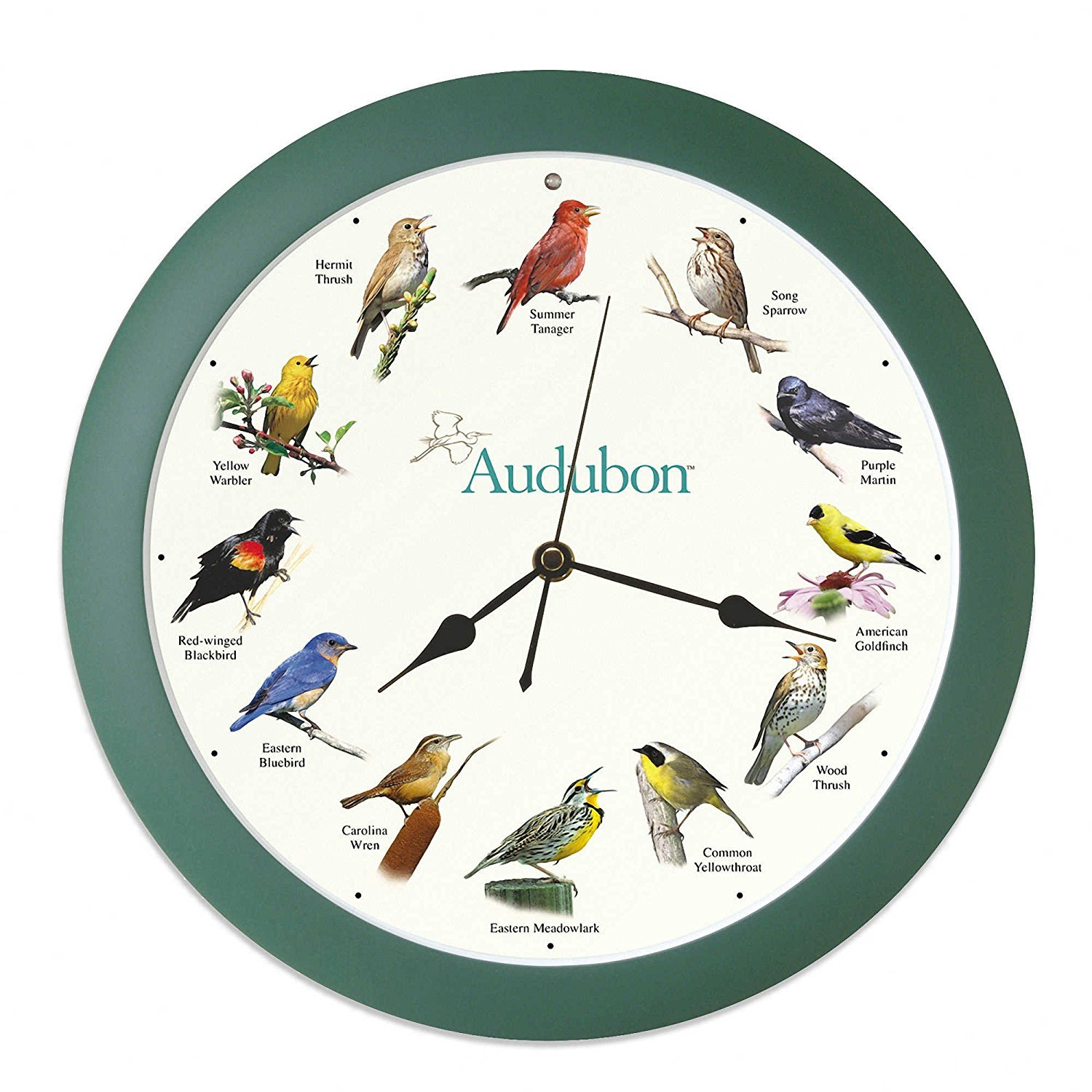 Audubon Singing Bird Clock - 13 Green GOLD CREST DISTRIBUTING MFAUD13