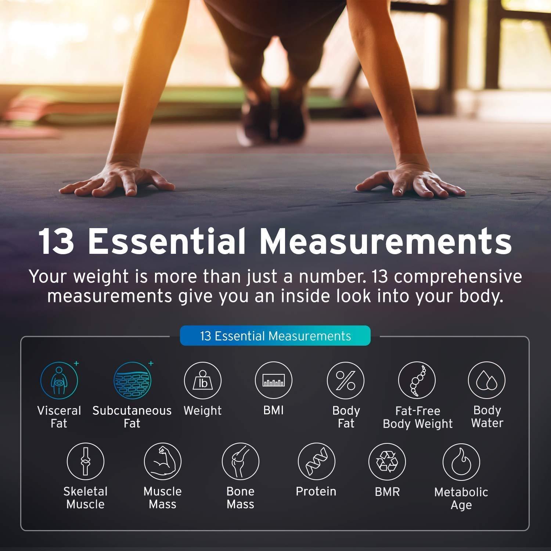 ETEKCITY ESF24 Báscula Grasa Corporal Bluetooth, Báscula de Baño Digital, Monitor de 13 Estadísticas de Medidas para iOS y Android, Superficie Amplia (300 ...